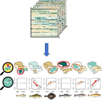 Illustration of Tensor Decomposition on the North Sea fish community.