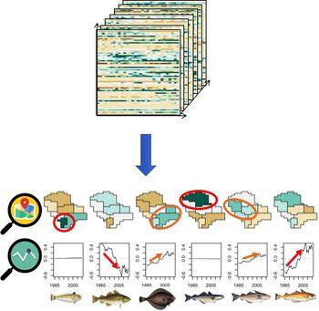 Illustration of Tensor Decomposition on the North Sea fish community.